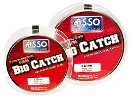 fluorocarbono big catch